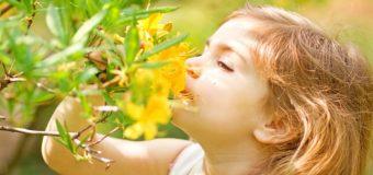 Những câu danh ngôn đáng suy ngẫm về trẻ em